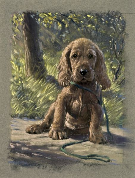 A puppy dog with a sad expression, sitting on a garden path. Pastel drawing by Raymond Sheppard