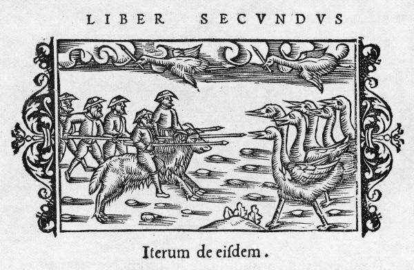 Combat between pigmies of Greenland, mounted on horses and armed with spears, against big birds