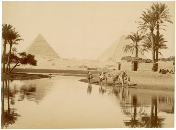 The Pyramids of Gizeh in Egypt, with water, trees, and camels in the foreground