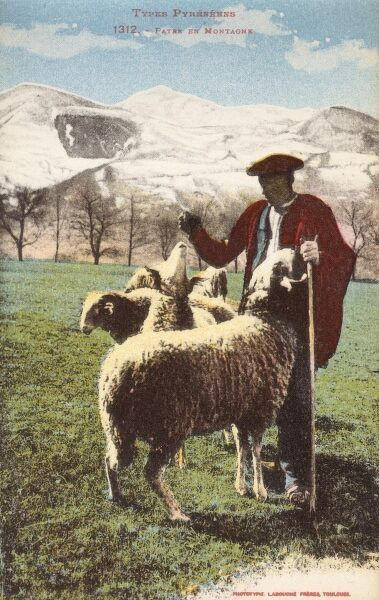 Pyrenean Shepherd and his flock, in the shadow of the mountains. Date: circa 1910s