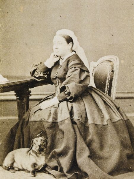 QUEEN VICTORIA Queen Victoria pictured at her desk, c.1865 in the company of one of her dachshunds, possibly Waldie