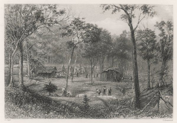 Encampment at New Zealand Gully, near Roehampton, Queensland