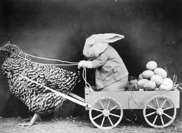 A rabbit in a cart full of eggs, pulled along by a hen! Date: early 1930s