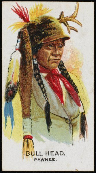 Bull Head: Chief of the Pawnee tribe