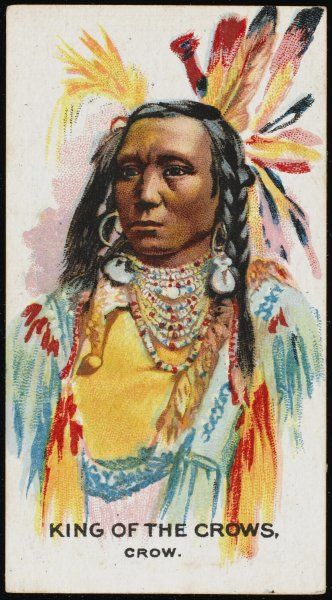 King of the Crows: Chief of the Crow tribe