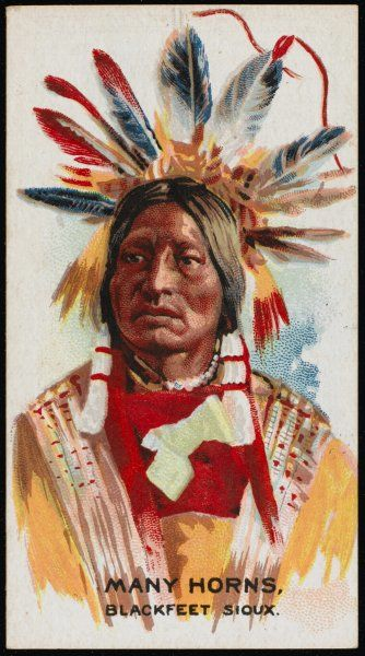 Many Horns: Chief of the Blackfoot Sioux