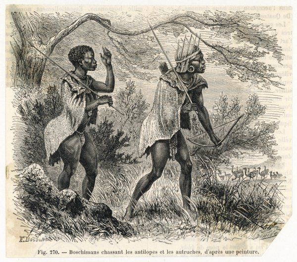 Two Bushmen hunting antelopes and ostriches