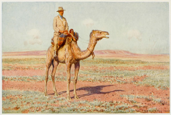 A surveyor on camelback reconnoitres the route for the trans-continental railway which will cross central Australia