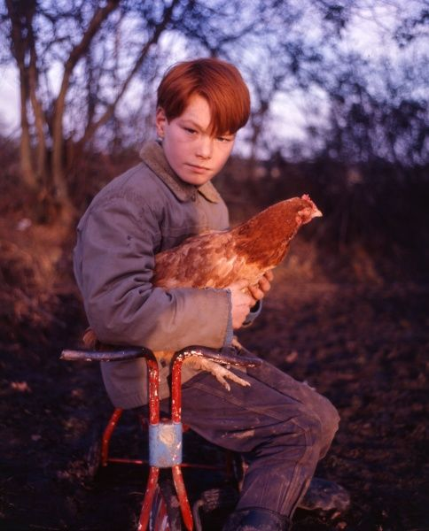 A red-haired gipsy boy sits on a battered-looking scooter holding a chicken