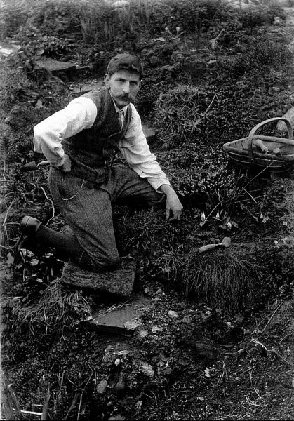 Reginald Malby (1882-1924), official photographer to the Royal Horticultural Society, working in his garden