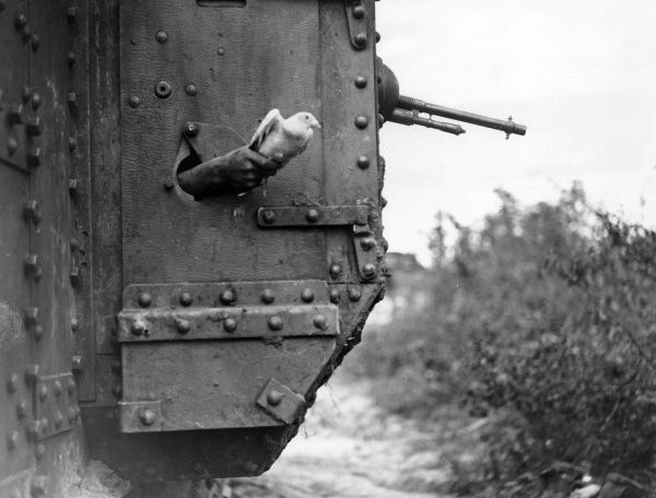 A human hand releasing a carrier pigeon through the porthole of a tank, near Albert, Somme, northern France, during the First World War. Date: 9 August 1918