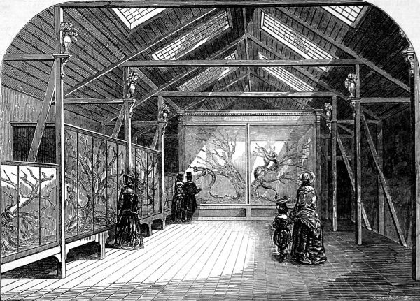 Engraving showing the interior of the Reptile House at the Zoological Society Gardens (London Zoo), Regent's Park, 1849