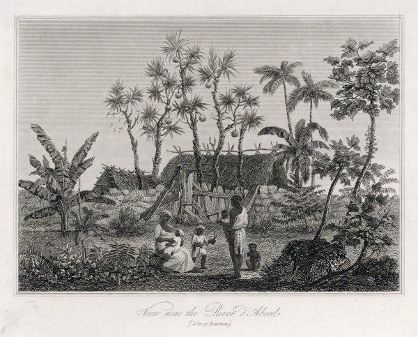 A native home, near the river d'Abords