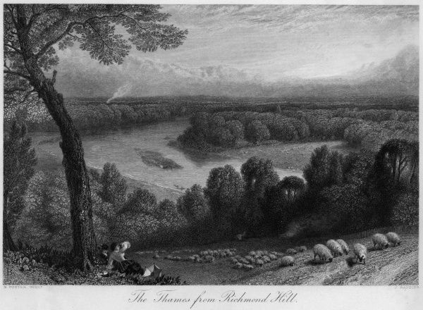 Sheep browse placidly on Richmond Hill, oblivious to the splendid view of the Thames to their west. Date: circa 1860