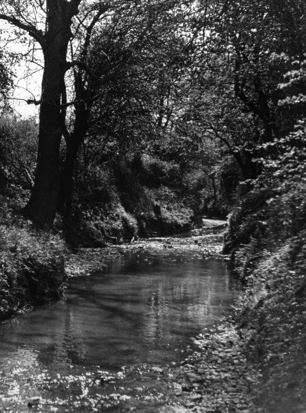 Salmon Brook, Chaseside, Enfield, Middlesex, England, a small tributary of the River Lea. Date: 1930s