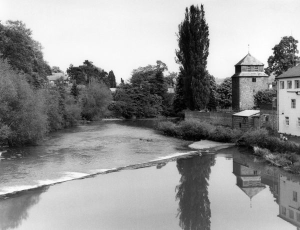 The calm waters of the River Severn, prior to passing over a weir at Newtown, Montgomeryshire, Wales. Date: 1950s