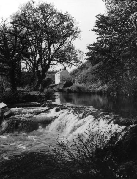 A picturesque setting of a natural weir on the River Teign, near Dunsford, Devon, England. Date: 1950s