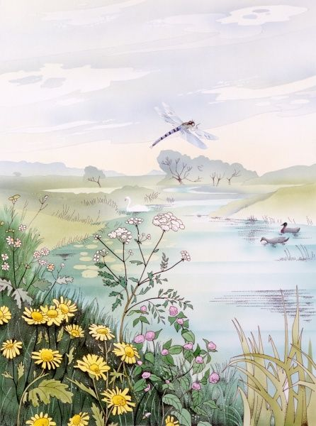 A summer riverbank scene with pale calm hazy water, dappled with lilypads and ducks, daisies and a small dragonfly. Watercolour painting by Malcolm Greensmith