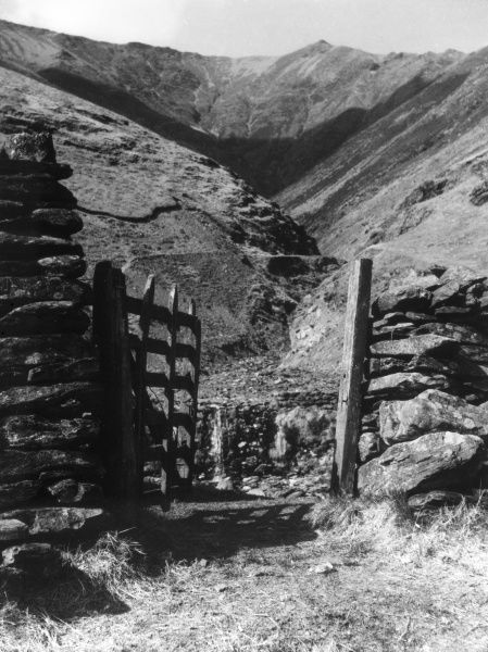 A glimpse of the rocku track leading up to Blencathra (Saddleback), from Gategill, near Keswick, Cumbria, England. Date: 1960s