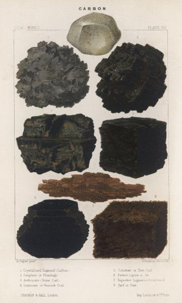 Various types of carbon including crystallised diamond, graphite, slate coal and peat