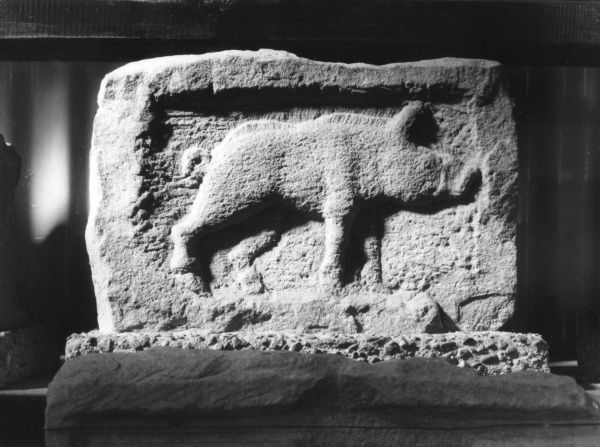 A Roman stone carving of a wild boar. The wild board was the emblem of the 20th Legion, one of the legions which helped to build Hadrian's Wall, Northumberland, England. Date: 1st century