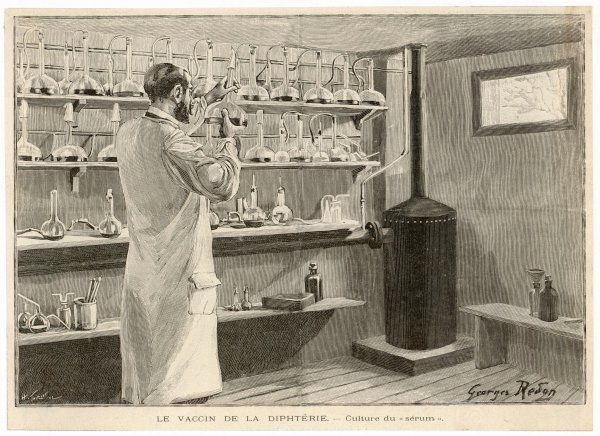 Roux prepares his serum: his method against Diphtheria