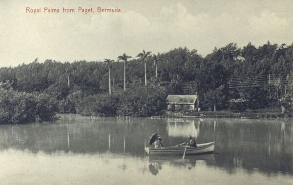 The Royal Palms from Paget, Bermuda, West Indies Date: circa 1910s