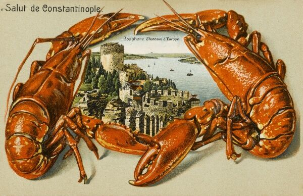 Rumeli Hisari, Constantinople, set within a border of two lobsters