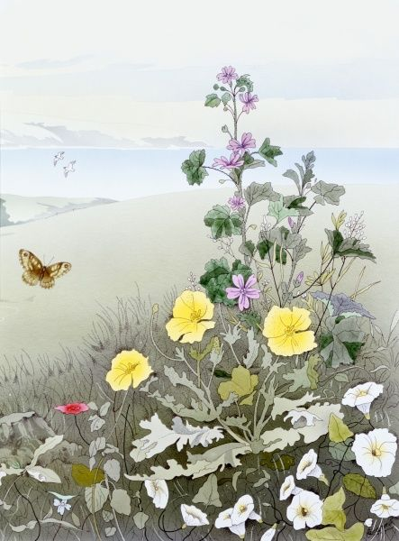 A pretty rural scene with white, yellow and mauve flowers and a butterfly, with the sea in the background