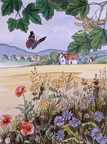 A red Admiral Butterfly flies above a hedgerow border of wildflowers in this landscape painting by Malcolm Greensmith, encapsulating the English countryside