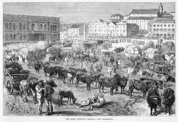 The early morning market