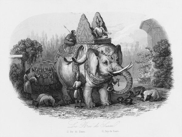 The sacred elephant of the King of Siam (Thailand)