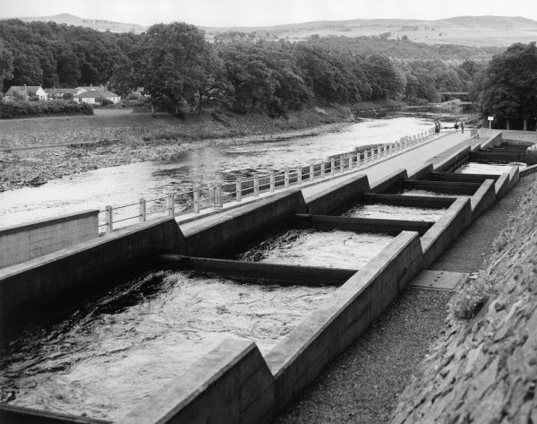 The salmon 'fish ladder' on the River Tummel, Pitlochry, Perthshire, Scotland. Date: 1960s
