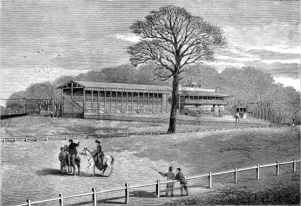 Engraving showing the track and stands of the then newly constructed Sandown Park Racecourse, 1875