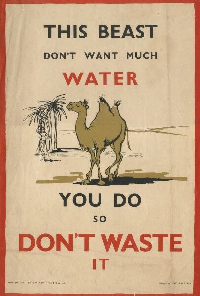 A camel is used as an example of a creature not wanting much water, in comparison to the British population who did, but were being urged not to waste it