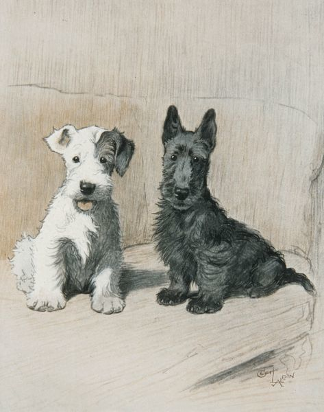 Two sweet looking pet dogs one a Scottish terrier, another a wire-haried fox terrier, pose for the artist