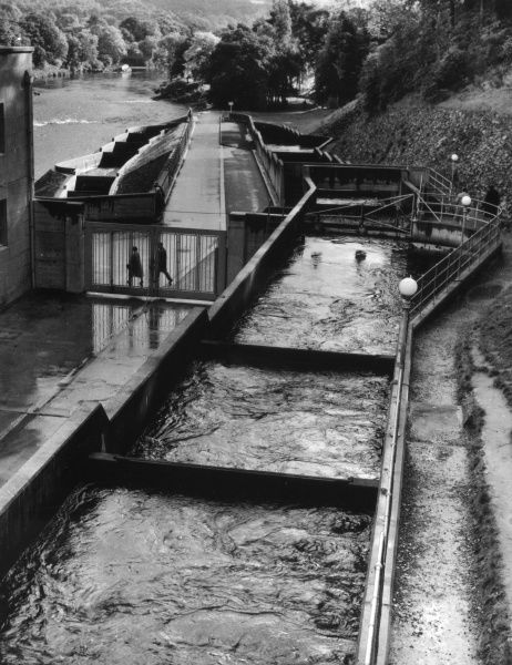 Pitlochry, Perthshire, Scotland. A view of the River Tummel, looking down from part of the Dam and Hydro-Electric Station. On the right is the salmon 'fish ladder'. Date: 1960s