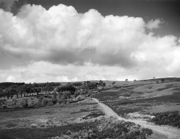 A view of the countryside near Cardross, Dunbartonshire, Scotland. Date: 1960s