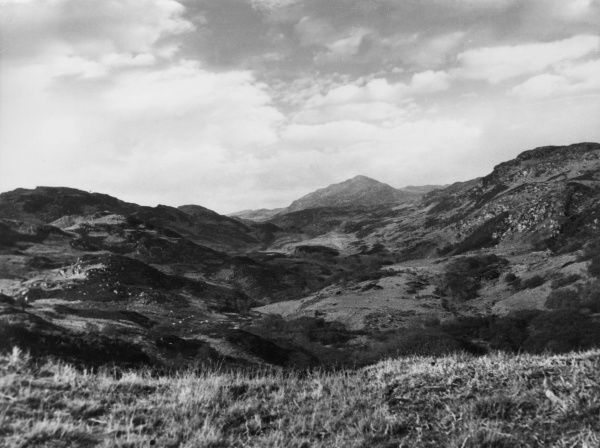 A typical moorland scene near Colintraive, Argyllshire, Scotland. It consists of a mixture of heather, rough pasture, bogland, bracken and small sized trees and bushes. Date: 1930s