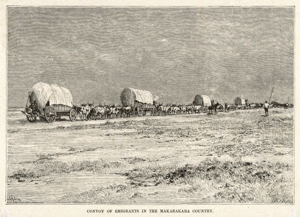 A convoy of emigrants in the Makarakara country of Bechuanaland (known as Botswana since 1966)