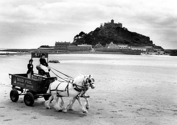 Two white shire horses pulling a cart along Marazion beach in Cornwall, with St Michael's Mount in the background