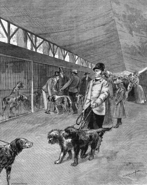 Dogs in cages or being exercised in a covered barn, on the 'Terrasse des Tulleries' Paris, waiting to be judged at a Dog Show. Date: June 1901