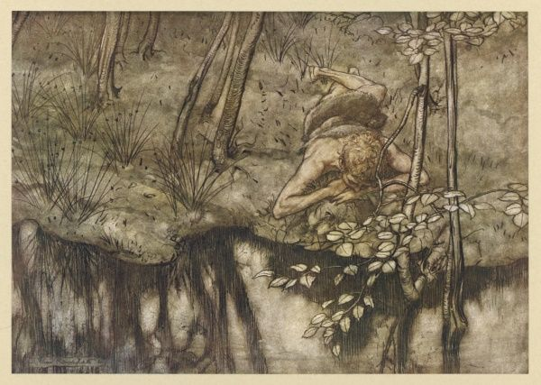 Siegfried sees his reflection in a forest stream