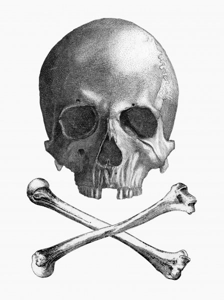 The Jolly Roger is the name given to any of various flags flown to identify a ship's crew as pirates