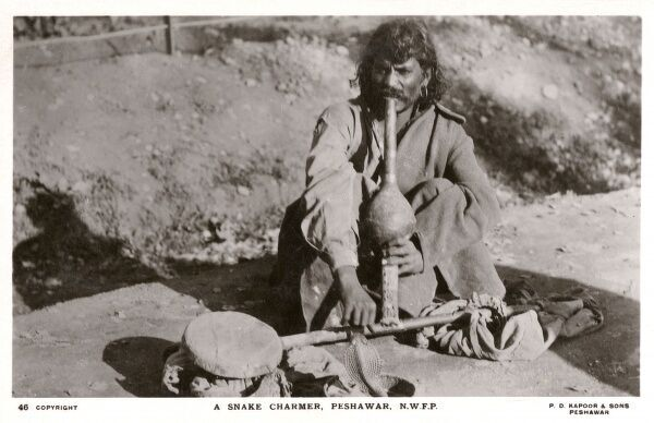 Snake Charmer - Peshawar, Pakistan, with his pipe and musical Cobra (extremely real by the looks of things!). Date: 1924