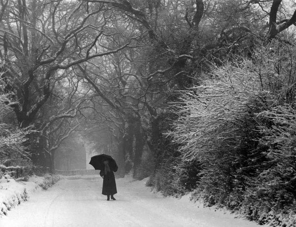 A woman with an umbrella stands on a snowy road. The trees look very pretty with snow on their branches. Date: February 1940