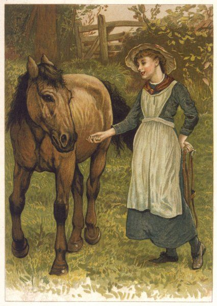 A girl and a horse in a field