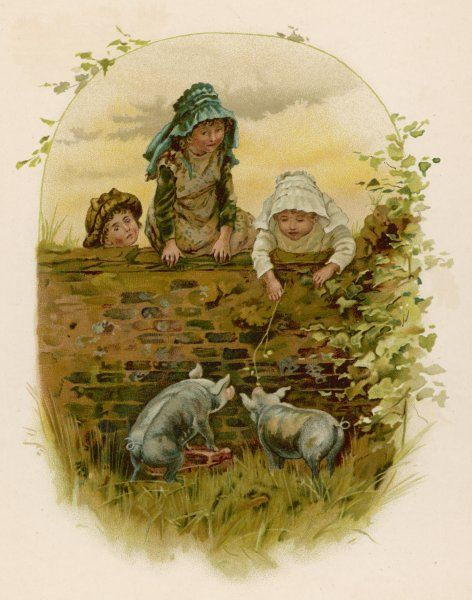 Three children look over a wall at two small pigs