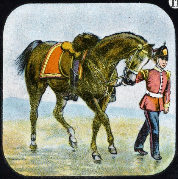 A British soldier leading a horse