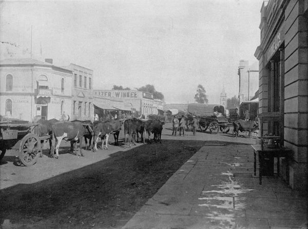 Street scene with wagons drawn by oxen